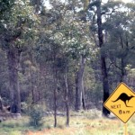 The most unusual road sign, in Australia.
