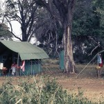 Our tent in East Africa.