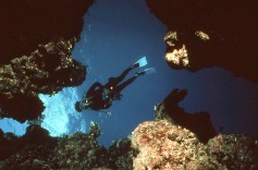 Ann scuba diving in the Red Sea.